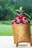 Plums in the basket Royalty Free Stock Photography