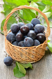 Plums in basket Royalty Free Stock Image