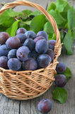 Plums in basket on the wooden table Royalty Free Stock Images