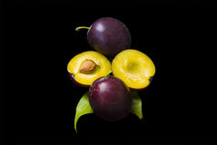 Plums On Black Stock Image