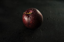 Plums on Black. Low key shot of a Plum on a black smooth and wet surface stock images