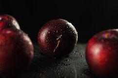 Plums on Black Stock Photos