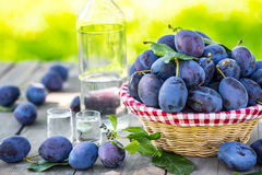 Plums. Blue and violet plums in the garden on wooden table Royalty Free Stock Photo