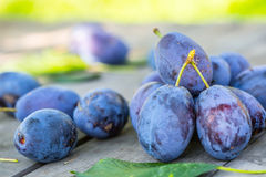Plums. Blue and violet plums in the garden on wooden table Royalty Free Stock Photos