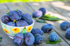 Plums. Blue and violet plums in the garden on wooden table.Plums. Blue and violet plums in the garden on wooden table. Stock Images