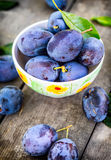Plums. Blue and violet plums in the garden on wooden table.Plums. Blue and violet plums in the garden on wooden table. Royalty Free Stock Photos