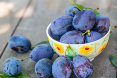 Plums. Blue and violet plums in the garden on wooden table.Plums. Blue and violet plums in the garden on wooden table. Stock Image