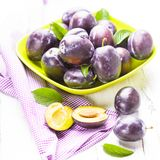 Plums in a bowl. Fleshy plums in a bowl on the table Royalty Free Stock Photography