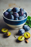 Plums In Bowl. Freshly picked organic plums in bowl on table Stock Photos