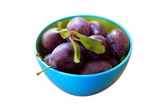 Plums in bowl isolated Stock Images