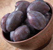 Plums in bowl Royalty Free Stock Image