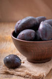Plums in bowl Stock Photography