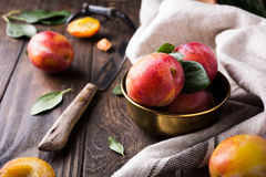 Plums in bronze bowl Royalty Free Stock Photo