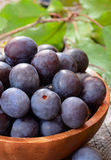 Plums in brown bowl Stock Photos