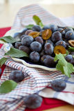 Plums in a china bowl. Ripe plums in a vintage china bowl stock image