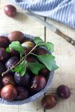 Plums in a clay bowl on a wooden table. Rustic style, selective focus. Vertical Royalty Free Stock Image