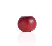 Plums close up isolated on white background Stock Photography