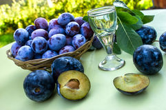 Plums - damson and plum brandy Stock Image