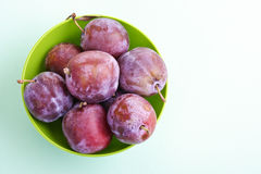 Plums, damsons in green plastic bowl Royalty Free Stock Images