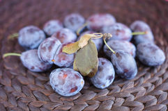 Plums on dark natural background Royalty Free Stock Images