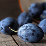 Plums on a dark wooden table background Stock Image