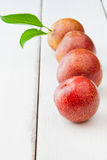 Plums Stock Image