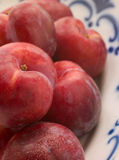 Plums In Dish Stock Image