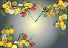 Plums and dragonflies frame Stock Photo