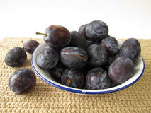 Plums in a enamel bowl Stock Photos