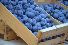 Plums at farmers market stock photography