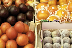 Plums and Figs Royalty Free Stock Image