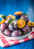 Plums. Fresh juicy plums in a bowl on a wooden or concrete board Royalty Free Stock Photo
