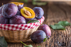 Free Plums. Fresh Juicy Plums In A Bowl On A Wooden Or Concrete Board Royalty Free Stock Image - 98107456