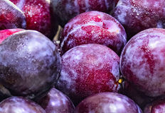 Plums. Fruits food nature berries Stock Photo