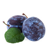 Plums fruits with leaf isolated on white background Royalty Free Stock Image