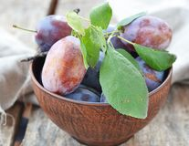 Plums  fruits Stock Images