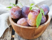 Plums  fruits Stock Photo