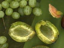 Plums and grapes. Closeup of green plum and green grapes Stock Photos
