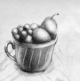 Plums and grapes in a cup. Still life. Pencil drawing Stock Photos