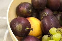 Plums, grapes and peach in dish Stock Image