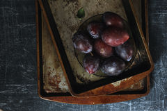 Plums with grunge background. In dark food photography style Royalty Free Stock Images