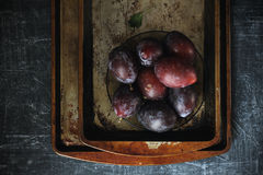 Plums with grunge background. In dark food photography style Stock Photography