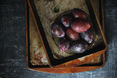 Plums with grunge background. In dark food photography style Royalty Free Stock Image