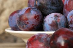 Plums from home orchard on wooden table stock images