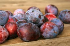 Plums from home orchard on wooden table stock photography