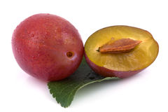 Plums on isolated Stock Photography