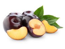 Plums isolated Stock Photography