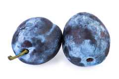 Plums isolated clipping path included Royalty Free Stock Photography