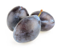 Plums isolated. On white background Stock Image