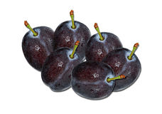 Plums Isolated Royalty Free Stock Images